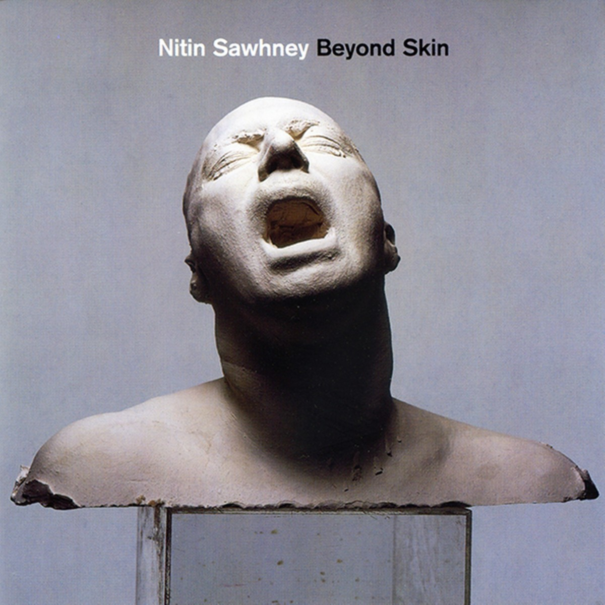 Nitin Sawhney ' Beyond Skin